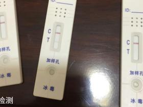 毒品尿液检测试纸阳性结果照片